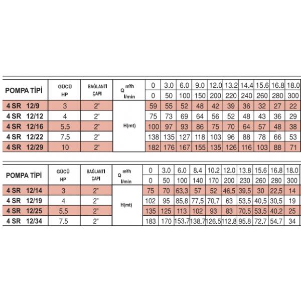 4 SR 12-22 İTALYAN PEDROLLO NORİL FANLI 7.5 HP POMPA